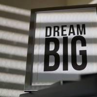 The Unexpected Consequences of Dream Chasing